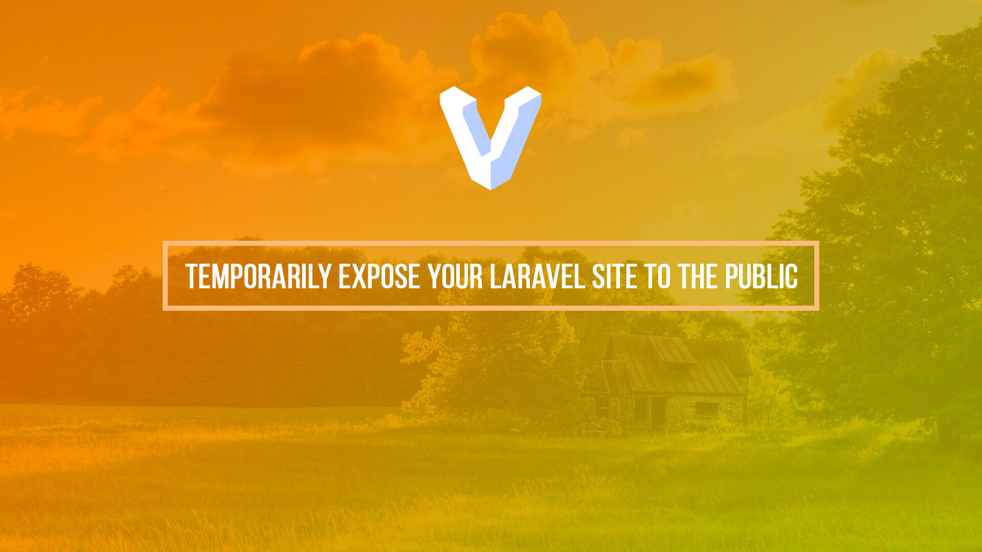 Temporarily expose your Laravel site to the public