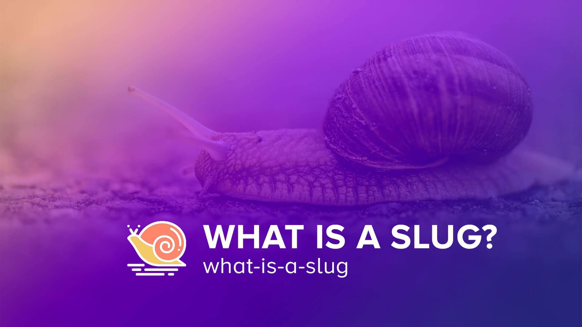 What is a Slug?