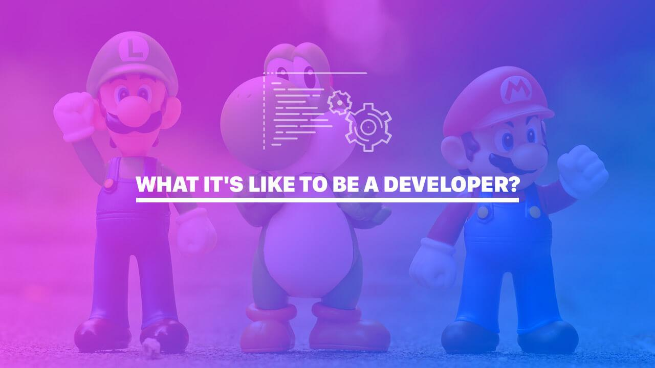 What it's like to be a Developer?